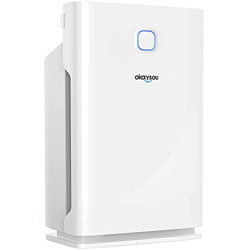 Okaysou Smart Air Purifier with Washable 3 Filters, Medical Grade H13 True HEPA, 5-in-1...