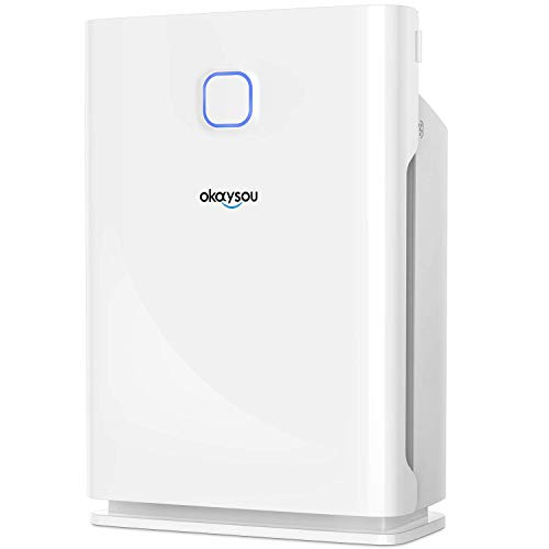 Okaysou Smart AirMax10L Pro Air Purifier with Washable Dual-Nanois Three Filters, Medical...