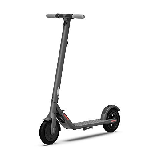 Segway Ninebot E22 Electric Kick Scooter, Lightweight and Foldable, Upgraded Motor Power,...