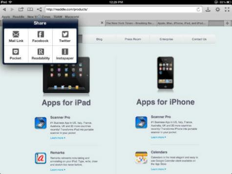 terra iOS browser