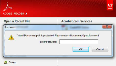 inserisci la password per pdf