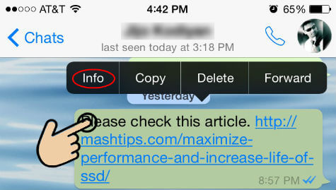 whatsapp message info