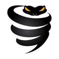 Golden Frog Vypr VPN