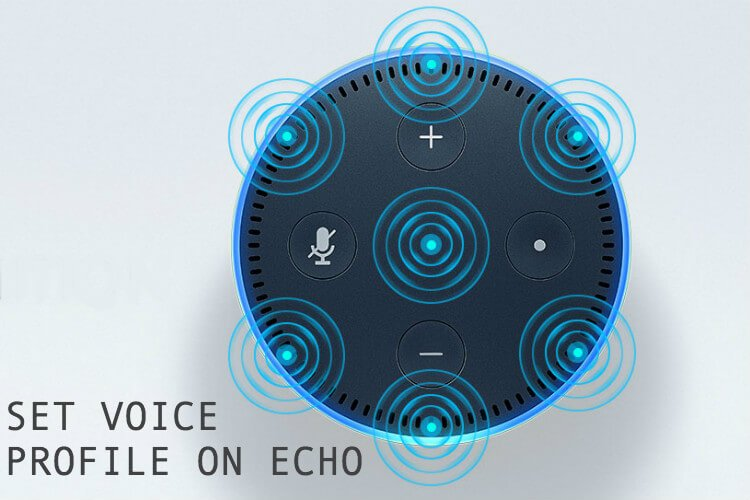 Set Voice Profile on Echo
