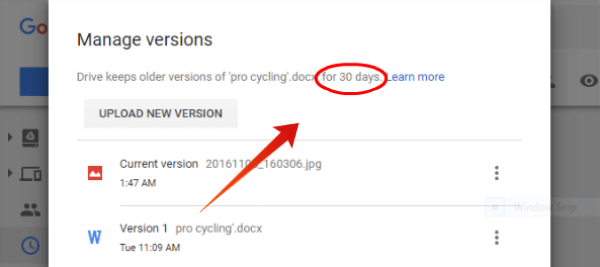 Google Drive File Version Period