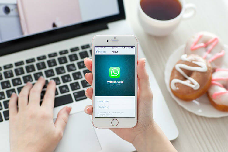 Integrate WhatsApp Business to my Website or Facebook
