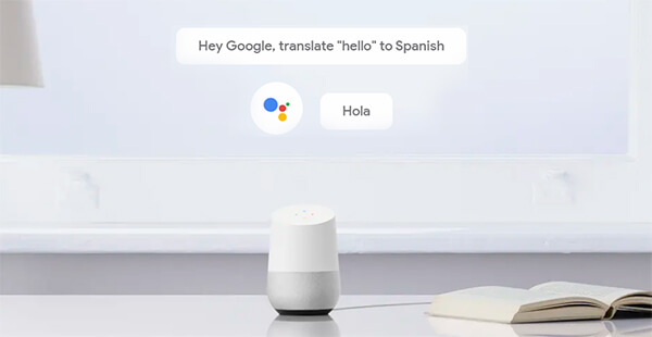 Translate using Google Home Language Skills