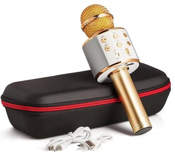 kaiyu karaoke microphone