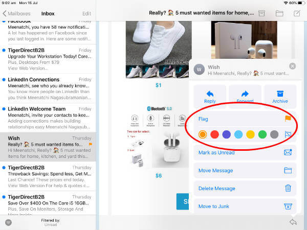 iPad OS Multicolor Flags