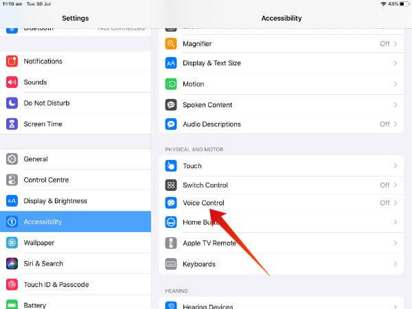 iPad enable voice control