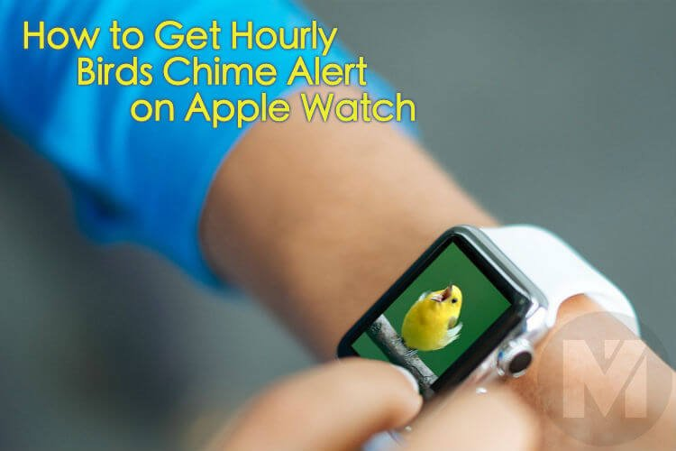 How to Get Hourly Birds Chime Alert Apple Watch