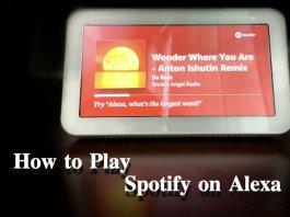 Play Spotify on Alexa