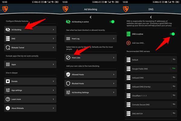 blockada systemwide dns, vpn, ad & crypto mining blocker