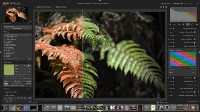 darktable Adobe Lightroom alternative for Linux