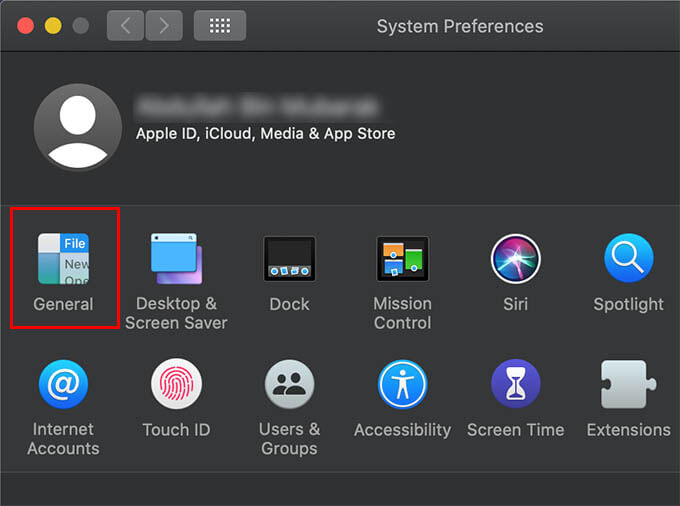 Open System Preferences go to General on Mac