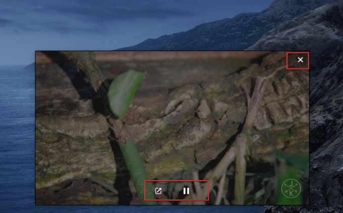 Disable Picture in Picture on Mac