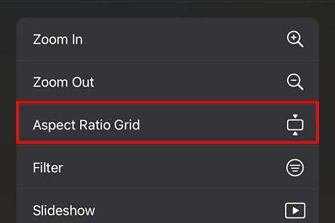 Aspect Ratio Grid in iPhone Photos App