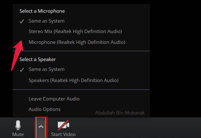 Change Microphone on Zoom