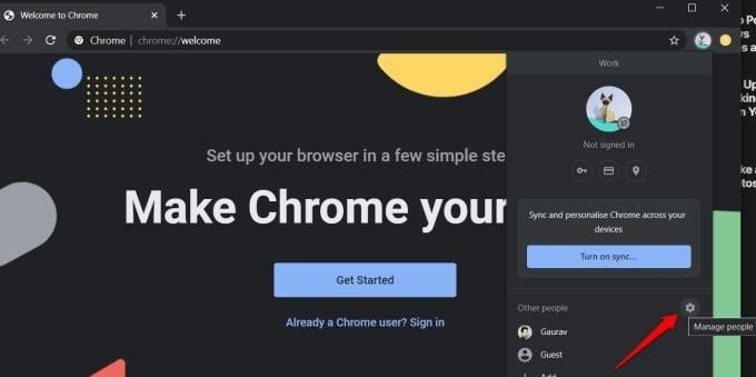 google chrome profile options