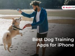 Best Dog Training Apps for iPhone