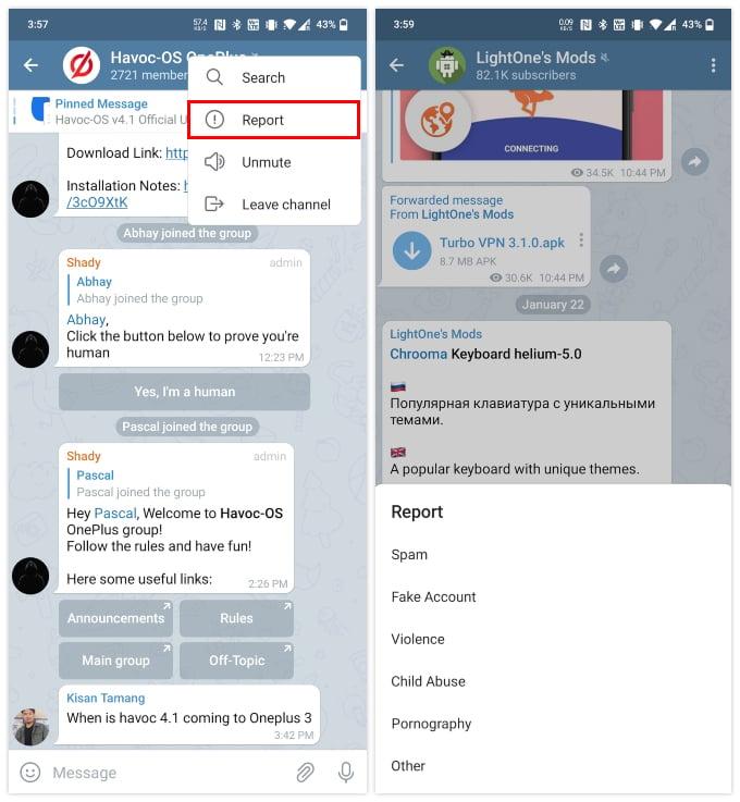 Report telegram channel