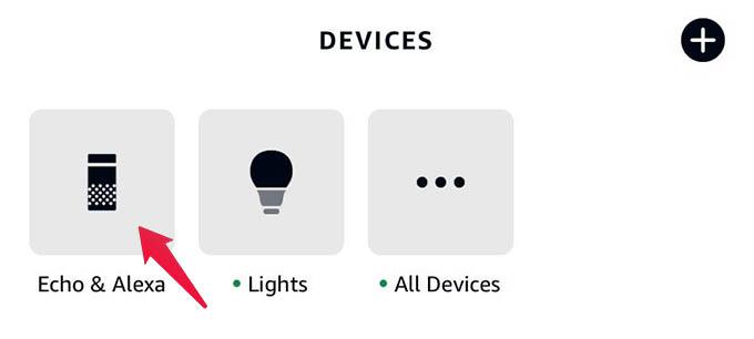 Alexa Devices Tab on Phone
