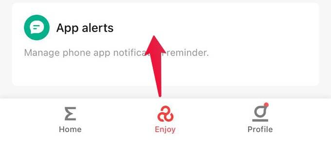 Amazfit Bip Zepp App Alerts Settings