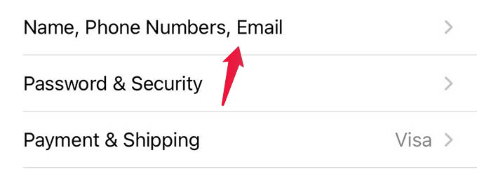 Name Phone Number Email Settings on iPhone