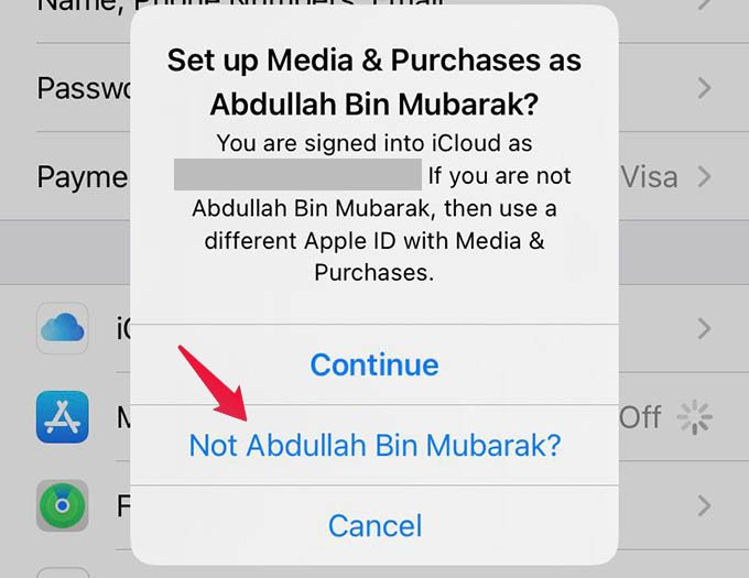 Sign in to Different Apple ID on iPhone for Subscriptions