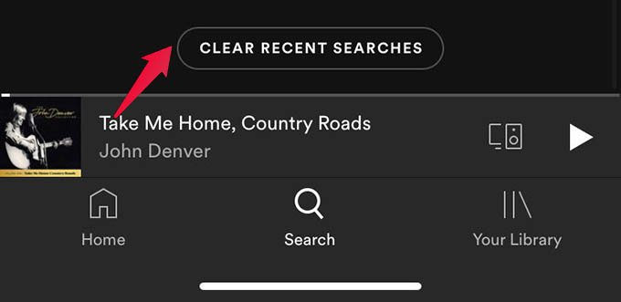 Clear Spotify Search History