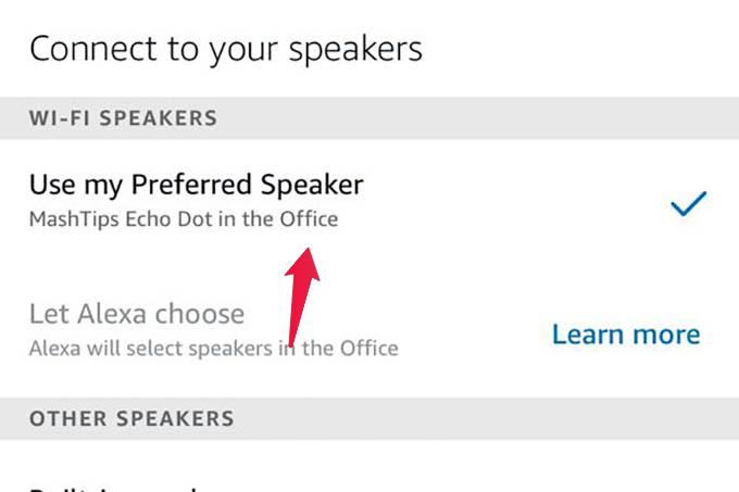 Use Echo Dot as Default Speaker for Alexa