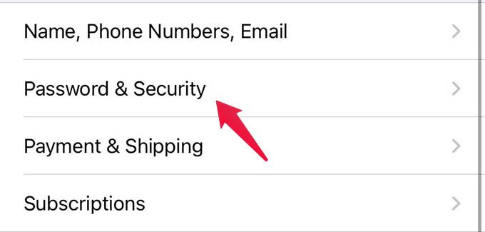 iPhone Password and Security Settings