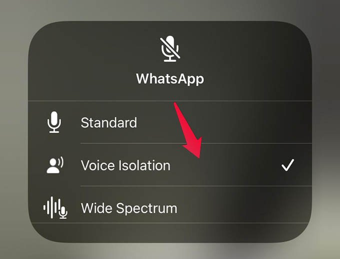 Enable iPhone Voice Isolation to Reduce Background Noise on iPhone Video Calls