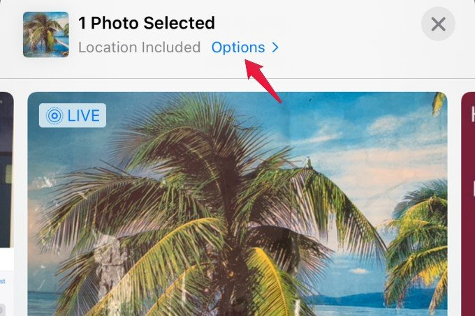 options menu for photo on iphone