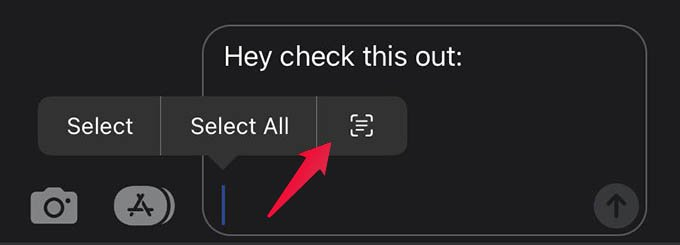 Scan Text while Typing on iPhone