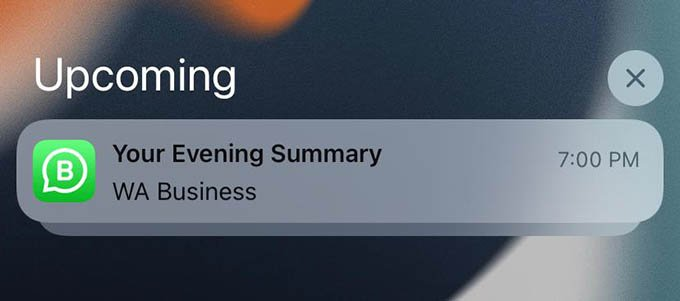 Scheduled Summary Notifications on iPhone