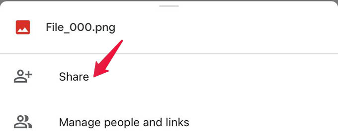 Share File in Google Drive
