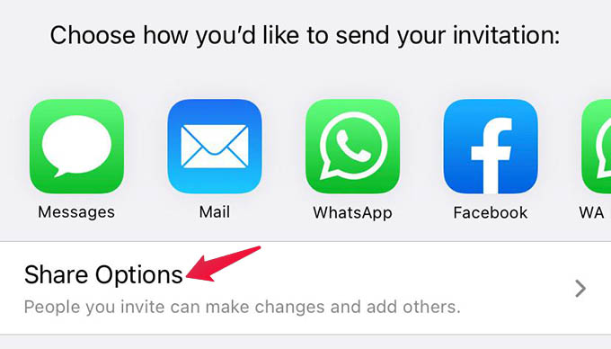 iCloud Share Options on iPhone