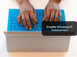 Enable Windows 11 Autocorrect