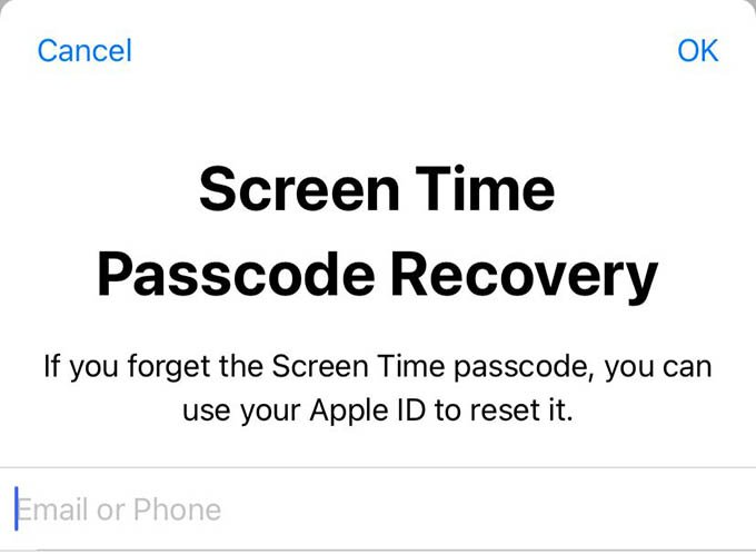 Enter Recover Apple ID for Screen Time Passcode