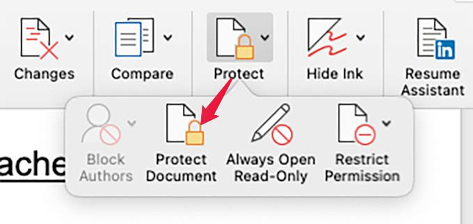 MS Word Protect Document in Mac