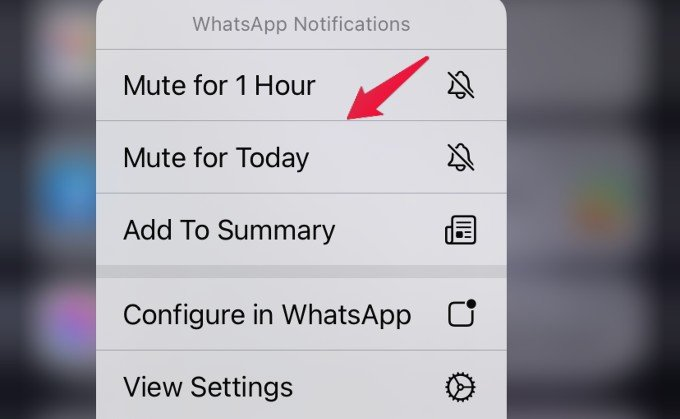 mute notifications temporarily