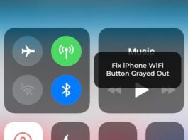 Fix iPhone WiFi Button Grayed Out