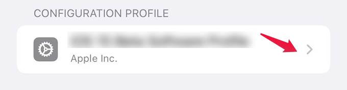 Select Configuration Profile on iPhone