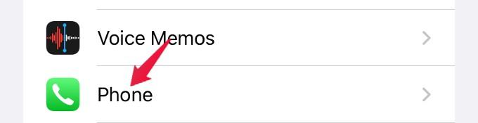 settings phone iphone